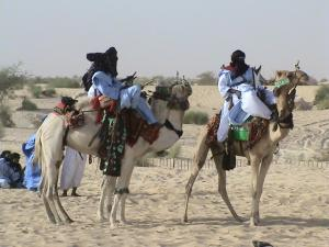 Touareg on Camels